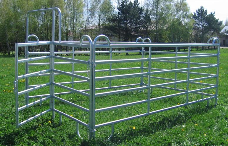 livestock panels for sale china