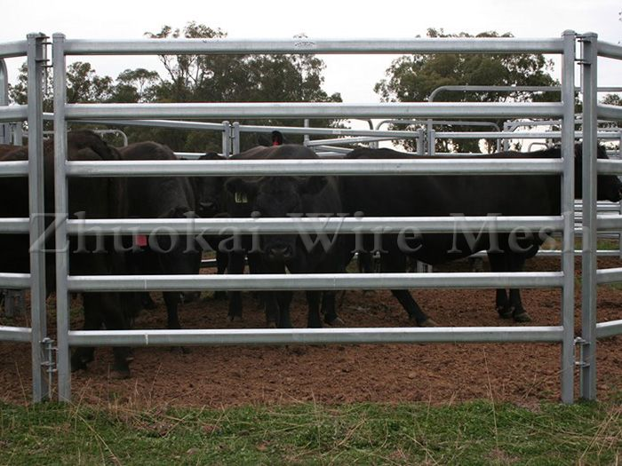 livestock panels for sale,cattle panel,Livestock Panel;Zhuokai Wire ...